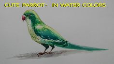 How to paint A beautiful Parrot    in water colors