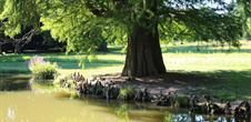 GARDENS Le parc de Schoppenwihr