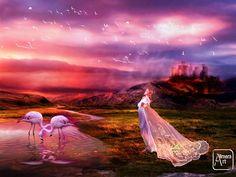 Sunset Birds by Alimera