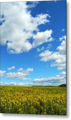 Skies The Limit Landscape Metal Print by Christina Rollo.  All metal prints are professionally printed, packaged, and shipped within 3 - 4 business days and delivered ready-to-hang on your wall. Choose from multiple sizes and mounting options.