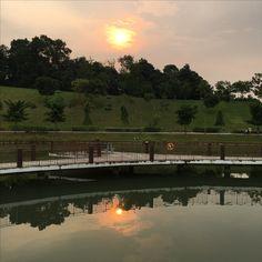 Singapore punggol waterway park #morningsun