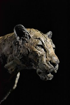 Bronze, signed Hamish Mackie, numbered edition of dated 2019 Animal Sculptures, Lion Sculpture, Lion Walking, Wild Lion, Outdoor Settings, Mark Making, Bronze Sculpture, Clay Art, Big Cats
