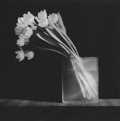 Robert Mapplethorpe: Dark and LightUnseen images from the iconic photographer's extensive archive [[MORE]]A rare selection of photographs by late artist Robert Mapplethorpe, curated by renowned photography critic Vince Aletti, is on show at Moran...