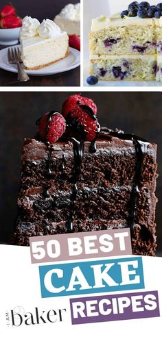 A compilation of different best cake recipes in the world! Baking cakes at home can be just as fun as eating them as long as you have the right recipes! Beginner Baking Recipes, Cake Recipes For Beginners, Best Cake Recipes, Wing Recipes, Bunt Cakes, Cupcake Cakes, Cupcake Ideas, Baker Recipes, Cooking Recipes