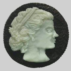 Inside  of an  oreo cookie..really..look  em  up