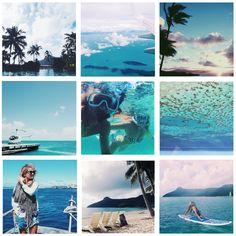 hamilton-island-blog-image.jpg 1,823×1,825 pixels