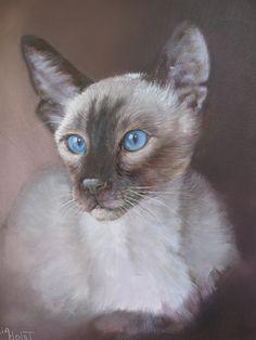 portrait of a siamese cat. Painting by ria van der holst.  www.riavanderholst.nl