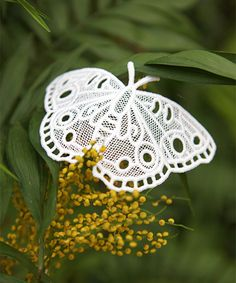 Urban Threads: Elegant Lace Butterflies from the Chrysalis Collection.