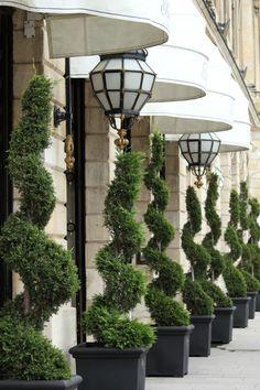 Frivolous Fabulous - The Ritz Paris France Hotel Paris, Paris Hotels, The Ritz Paris, Paris Paris, Tuileries Paris, Grande Hotel, Hotel Restaurant, Beautiful Paris, Belle Villa