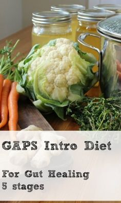 The GAPS Introduction Diet Stages for Faster Healing through Nutrient-Dense Food | Health, Home, & Happiness (tm)