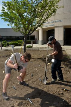 Replanting native bushes at NIFC