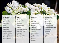 Comprehensive list of popular seasonal flowers! | Rue