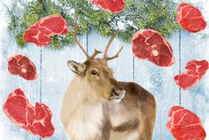 Rudolph, how could you?  Reindeer Sometimes Eat Meat | Mental Floss
