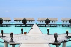 Travel the Life: REETHI BEACH - UN RESORT PARA DISFRUTAR DE LO MEJOR DE LAS MALDIVAS The Life, Beach Resorts, Mansions, House Styles, Outdoor Decor, The Maldives, Beach, Mansion Houses, Manor Houses