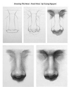 Dit zijn nog meer plaatjes van neuzen die ik gebruikt heb voor inspiratie.