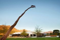 Leopard's Leap closes tourism experience in face of Corona threat Wine Tourism, Call Art, Lush Garden, Most Beautiful Cities, Leopards, South Africa, Vineyard, Places To Visit, Things To Come