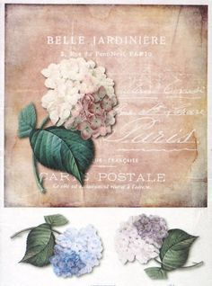 Ricepaper for Decoupage Decopatch Scrapbook Craft Sheet Vintage Hydrangea Card