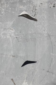 Dolphin speaker, Architettura Sonora 2008