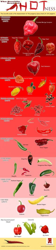 """""""HOT"""" NEWS: The Scoville scale is the measurement of the pungency (spicy heat) of chili peppers. The number of Scoville heat units indicates the amount of capsaicin. Spicy Recipes, Mexican Food Recipes, Chile Picante, Cooking Tips, Cooking Recipes, Food Charts, Barbacoa, Stuffed Hot Peppers, Veggies"""
