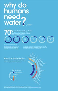 """RW Awesomeness of the  Day:  """"A day in contact with water"""" infographic by Javier Lim"""