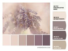 paint colors from colorsnap by sherwin williams more paint colors ...
