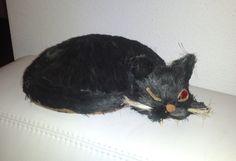 schwarze Katze auf unserer Couch... Horror, Couch, Cats, Animals, Halloween Accessories, Ghosts, Settee, Gatos, Animales