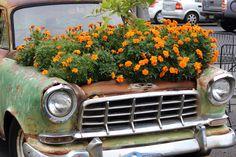 Flower Pot Car by Nicky Monk on 500px