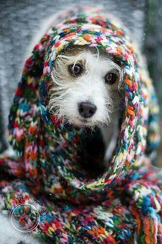 I is a rainbow nun