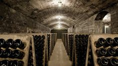 In the very depths of the Castillo Perelada cellars, surrounded by barrels and under a stone vault, Delfí Sanahuja gives a run-through of her working… Barrel, Stone, People, How To Make, Wine Cellars, Wine, Rocks, Batu, 1st Birthdays