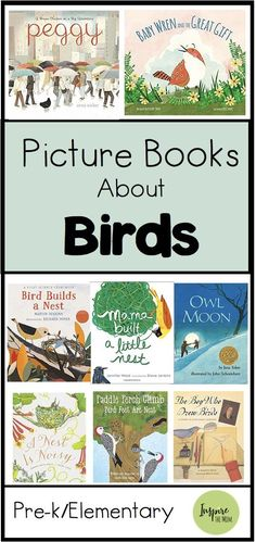 Picture Books about Birds is part of Preschool books - Having an Audubon Field Guide also helps to identifty the birds in your backyard Here are some of our favorite picture books about birds and their habits Homeschool Kindergarten, Preschool Books, Preschool Activities, Owl Preschool, Science Resources, Preschool Classroom, Science Art, Spring Activities, Reading Activities