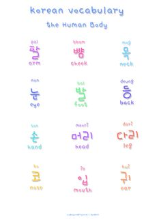 ❋learn korean - human body❋