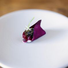 Just one bite! Roasted beets in sweet fig vinegar and toasted walnut oil, fermented fresh cream, butterfly purple sorrel, Osetra caviar,…