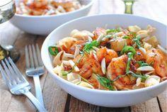 Paprika Shrimp Over Creamy Egg Noodles