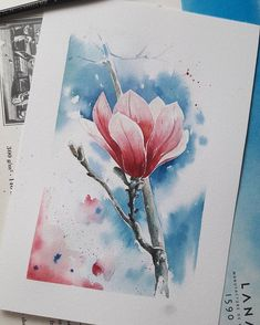 Winter – und ich habe Rosen))) … – Indispensable address of art Watercolor Flowers Tutorial, Watercolor Rose, Watercolor Cards, Watercolor Illustration, Arte Floral, Art Sketchbook, Painting & Drawing, Watercolour Paintings, Lovers Art