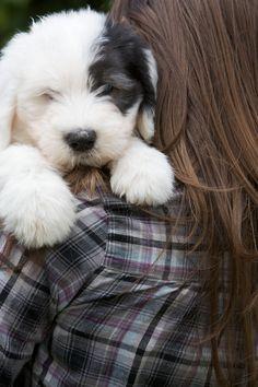 Puppy love♥