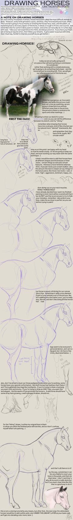 ENJOY! If you use this please link me to your work -- I'd love to see! This is a very basic drawing tutorial of a horse in a standard position. I threw a few tips in there which can be used wh...