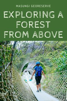 This unique trail will give you a glimpse of the forest - from above. Travel List, Asia Travel, Budget Travel, Travel Guides, Cheap Things To Do, Free Things To Do, Great Places, Places To See, Places To Travel