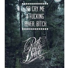 Possibly Parkway Drives most famous lyrics? #parkwaydrive #impericon #lyrics
