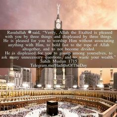 Rasulullah ﷺsaid Verily Allah the Exalted is pleased with you by three things and displeased by three things. He is pleased for you 1) to worship Him without associating anything with Him 2) to hold fast to the rope of Allah altogether and 3) to not become divided. He is displeased for you 1) to gossip among yourselves 2) to ask many unnecessary questions and 3) to waste your wealth. Sahih Muslim 1715 (Narrated by Abu Huraira) http://ift.tt/1OEvNkC #Thank #Alhamdulillah #Beautiful #Beauty…