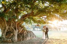 These are the Best bushveld wedding venues in South Africa. Get married in a beautiful nature reserve or game lodge. Safari Wedding, Lodge Wedding, Wedding Venues, Wedding Ideas, Bush Wedding, Wedding Book, Garden Venue, Game Lodge