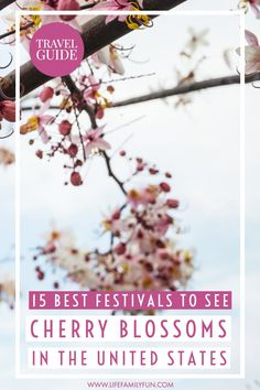 Cherry blossom festivals are all across the US. From Washington D. to California and in between, there are great cherry blossoms festivals to be found. Usa Travel Guide, Travel Usa, Travel Guides, California With Kids, Atlanta Travel, Cherry Blossoms, Travel Around The World, Cool Places To Visit, Trip Planning