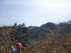 Unfezant in Yamatsuri, Fukushima 46 (Yamatsuriyama Park)