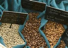 Coffee beans horizontal closeup of types of coffee beans (Coffea arabica) from raw to dark roast in same image with black signs and white writing labels displayed and tagged on blue fabric good textbook educational Coffee Type, Coffee Is Life, Black Coffee, Best Coffee, Coffee Club, Types Of Coffee Beans, Different Types Of Coffee, Ways To Make Coffee, How To Order Coffee