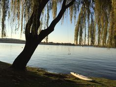 Vaal river, swing Frames, Africa, River, Celestial, Holidays, Sunset, Plants, Outdoor, Beautiful