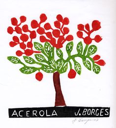 Acerola - José Francisco Borges (Brazil), Woodcut print on paper (8 x 7), 2007, 2011