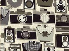 Michael Miller BPA Free Cameras Laminated Cotton Neutral