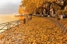 Visit Greece | Fall with us in the charming wonderland of Ioannina!!!  #VisitGreece #Greece #Ioannina Seasons In The Sun, Places In Greece, Need A Vacation, Beautiful Places To Visit, Artistic Photography, Scenery, Around The Worlds, Explore, Nature