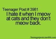 lol. i have a mama cat and she hissed... but maybe thats cuz we had two toms at the time
