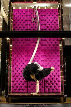 Fabulous Louis Vuitton Ostrich window display. #retail #merchandising #windowdisplay