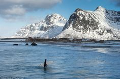You never thought you wanted to surf at the Arctic Circle until these 19 pics. Lofoten, Advantages Of Solar Energy, Energy Resources, Arctic Circle, Money Today, Killer Whales, Travel News, Go Green, Climate Change